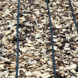 Bio Flächenfilter Biogas Entschwefelung